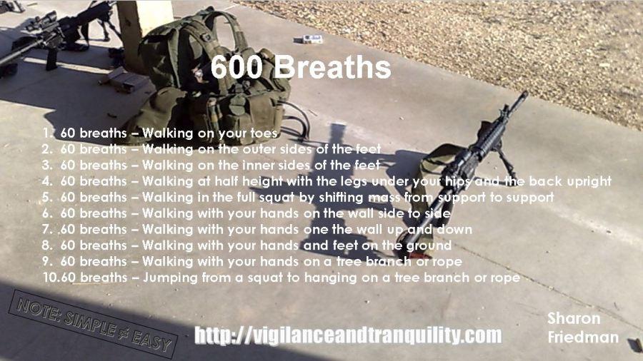 600 breaths sharon friedman